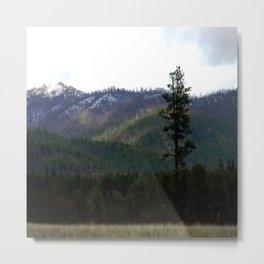 First snow on the mountains.... Metal Print