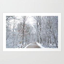 Snowfall at Brickworks on Christmas Day, 2020. LXXVII Art Print