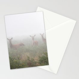 Three in the fog Stationery Cards
