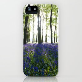 Bluebell Woods at Sunrise iPhone Case