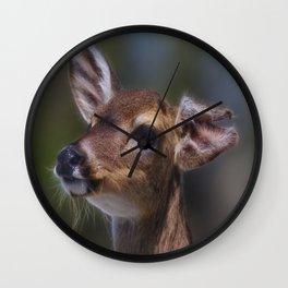 Key Deer Wall Clock