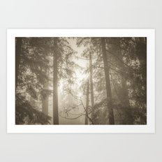 Nature Forest - Vintage Sepia Trees Art Print
