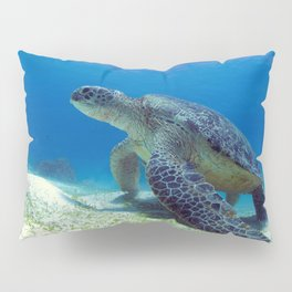 Poised Turtle Pillow Sham