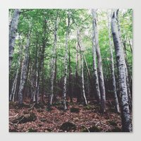 uncharted Canvas Prints featuring Uncharted Woods  by Oscar Goodwin