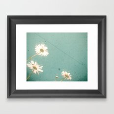 Three Daisies Framed Art Print