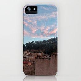 020 iPhone Case