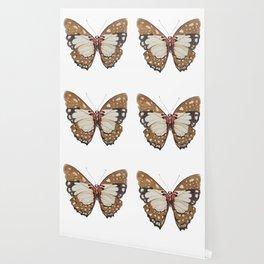 Orange Butterfly Wallpaper