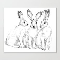 Three Hares sk131 Canvas Print