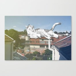 Rooftop Slumba Canvas Print