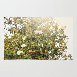 Ficus tree Rug