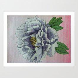 Peony Watercolor Art Print