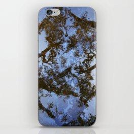 Filamental iPhone Skin