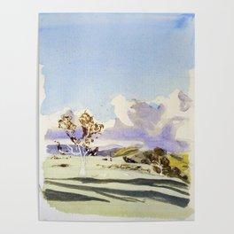 Snow landing Poster