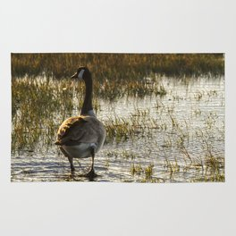 The Golden Goose Rug