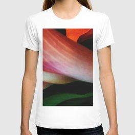 Faded Kayla Lily T-shirt