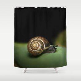 Garden snail Shower Curtain