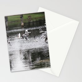 Birds on the run Stationery Cards