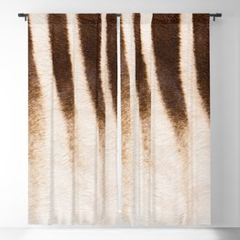 Zebra - Africa - #society6 #buyart #decor Blackout Curtain