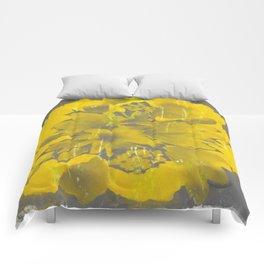 Dura Mater Comforters