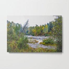 Temperance River State Park, Minnesota 12 Metal Print
