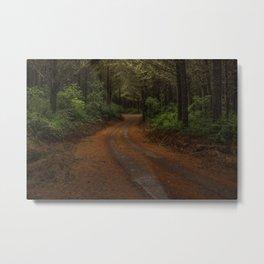 Finer Forestry Metal Print