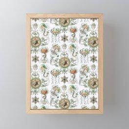 Ernst Haeckel - Trachomedusae (Jellyfish) Framed Mini Art Print