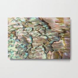 Abalone of My Dreams Metal Print