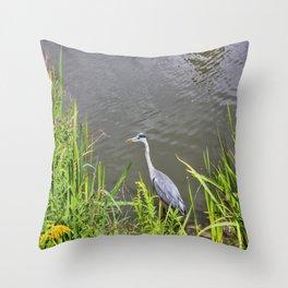 Beautiful Blue Heron Throw Pillow