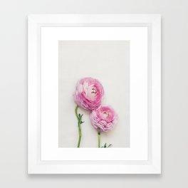 Pink Peonies 2 Framed Art Print