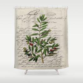 Chic paris scripts kitchen artwork french botanical leaf olive Shower Curtain