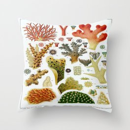 Great Barrier Reef Coral Reef Labeled Diagram Vintage Scientific Illustration Encyclopedia Lithograph Labeled Species Sea Life Illustration Throw Pillow