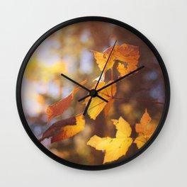 sun soaked autumn Wall Clock
