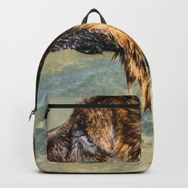 Wet Sheepdog in a Sailor Suit Backpack