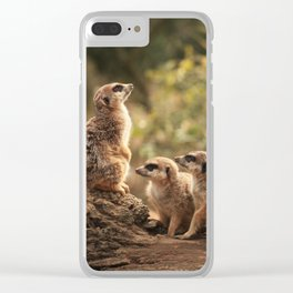 Meerkat Family Photography Clear iPhone Case
