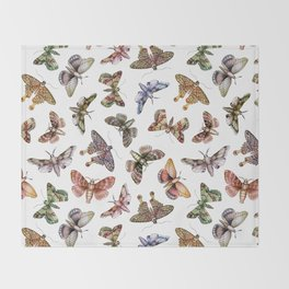 A Multitude Of Moths - Colorful Moth Pattern Throw Blanket