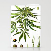 cannabis Stationery Cards featuring Cannabis Sativa - Koehler (1887) by Ouijawedge