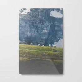 Beartooth Mountain Goats Metal Print