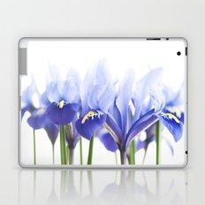 Bue Iris 2 Laptop & iPad Skin