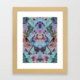 Crystal Collage Framed Art Print