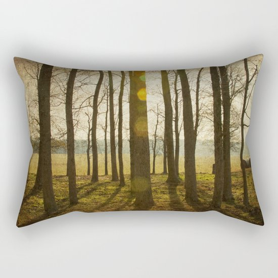 Afternoon Sunlight with Lens Flare Rectangular Pillow