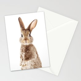 Brown Standing Bunny, Baby Animals Art Print By Synplus Stationery Cards