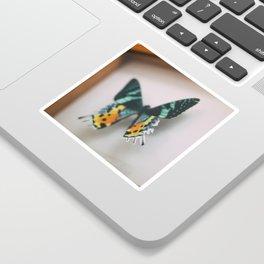 Butterflying Sticker