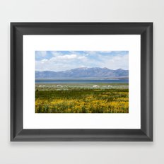 From Flowers to Mountains (Mono Lake, California) Framed Art Print