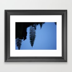 Ferns Framed Art Print