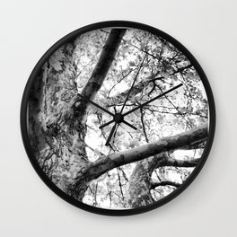 Okanagan Series Wall Clock