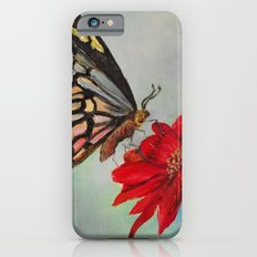 Swallowtail and Gerbera Square Slim Case iPhone 6s