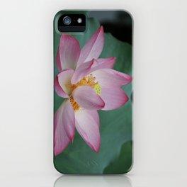 Hangzhou Lotus iPhone Case