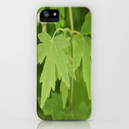Amber Orientalis Leaves iPhone Case