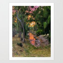 Sunset on the Swamp Art Print