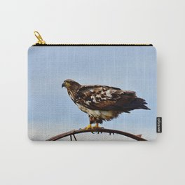 Young Bald Eagle perching on the Wheel Carry-All Pouch